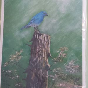 Bluebird print by Bill Trotz